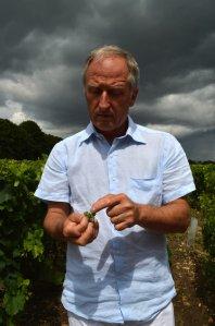 Bordeaux farmer lo