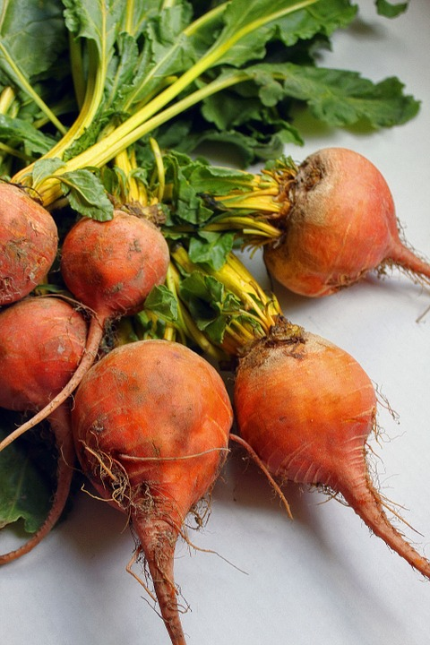 beets-366560_960_720