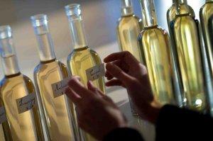 Wines samples